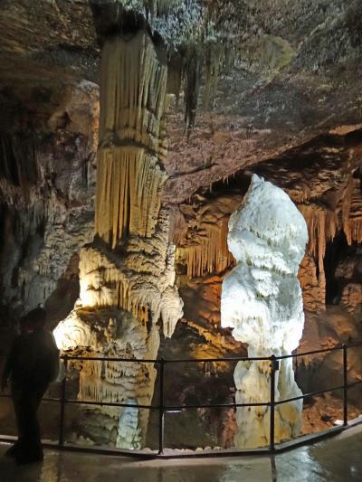 スロベニア 自然造形美の宝庫、ポストイナ鍾乳洞