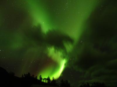 神秘のオーロラを求めて 秋の北欧へ ⑤Dreams come true in Tromsø