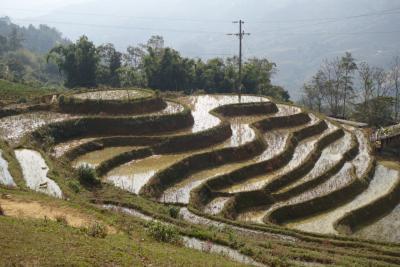 20161210 サパ 今日は独り歩き…のはずでしたが。Lao Chai村、Ta Van村往復コースで