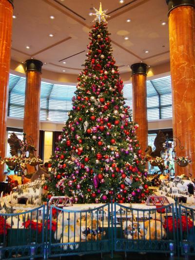 煌びやかな季節に慶びの日を♪恵比寿ガーデンプレイス・ウエスティンホテル東京・丸の内イルミネーション