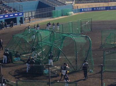 宮崎 プロ野球キャンプに行ってみた (巨人、ソフトバンク、オリックス)