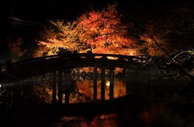 るろうに円蔵 京都散歩編4.雨の京都 ライトアップ