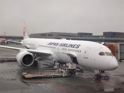 JALビジネスクラスで行くドイツ・フランクフルト ② JGC会員への道! 残り3ヵ月で50,000FLY ONポイントを貯めて「JMBサファイア」を獲得し、JGC会員になれるかな? ビジネスクラス(JAL SKY SUITE 787)の機内サービスのご紹介編