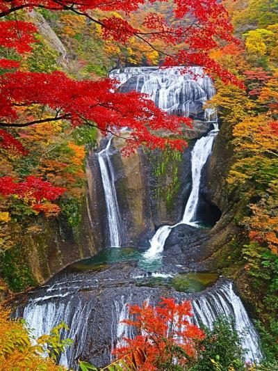 袋田の滝3/3 第二観瀑台 紅葉真っ盛りのとき ☆長さ120m、幅73mが一望