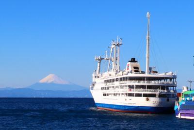 東海汽船で行く伊豆大島・三原山ハイキング夜行日帰りツアー
