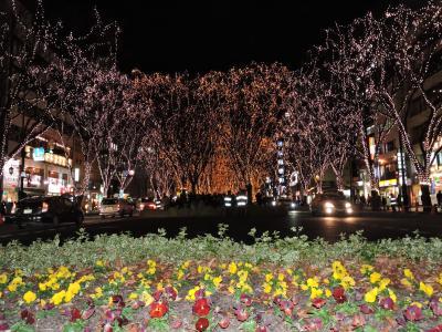 仙台「光のページェント」2016