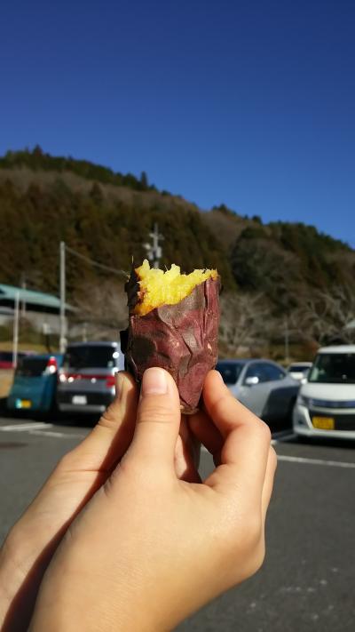 1泊2日で茨城旅行!ついでに道の駅巡りしちゃったよ!