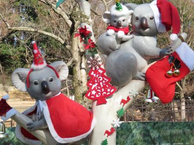 クリスマスイブ2016は多摩動物公園でのんびりと(1)クリスマス色の動物園&マレーバク・コツメカワウソ・ツキノワグマ・インドサイ・アムールトラ