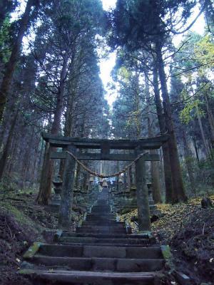 熊本-上色見熊野座神社・高森殿の杉-