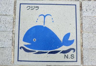東京から南へ1000キロ!小笠原諸島漫遊記・その7.母島‥えっなに?滞在2時間なのに感動だよ。