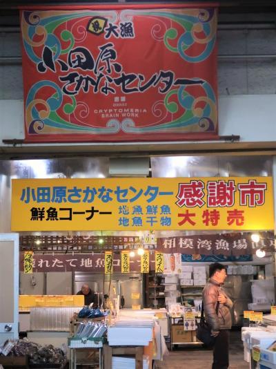 小田原へ 早川漁村で海鮮丼(昼食) ☆クラブツーリズム バス車窓風景