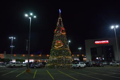 巡るMexico Aguascalientes イルミネーション