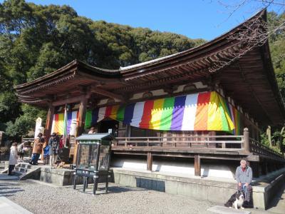 家族揃って初詣は、地元の長弓寺へ~今年も、お接待のしょうが湯をいただき、免疫アップだぜいヽ(^o^)丿