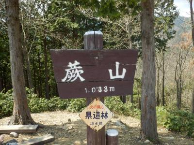 野花を見に蕨山に登りました