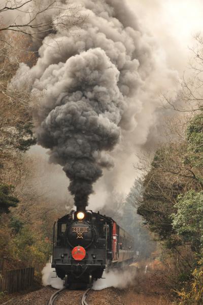 D51 200が山口線で平成29年以降復帰・・・今年もC56けん引の「SL津和野稲荷号」を撮って来ました。