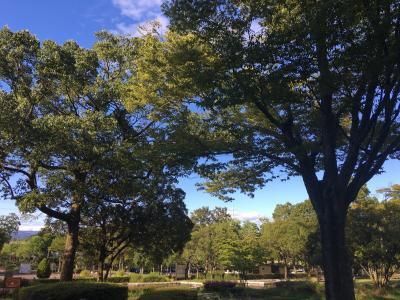 長女の家へ遊びに行った時に寄った「百年公園」
