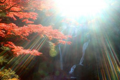 奥久慈の紅葉を求めて(袋田の滝)