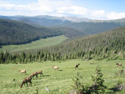 アメリカ縦横断 【3/5 Rocky Mountain National Park】