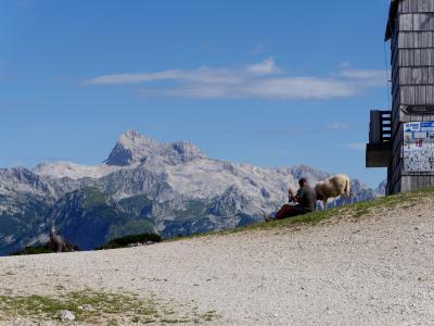 2016.8スロベニア・イタリア旅行6-Vogelスキー場にロープウエイで登る トリグラフとユリアンアルプスの素晴らしい景色