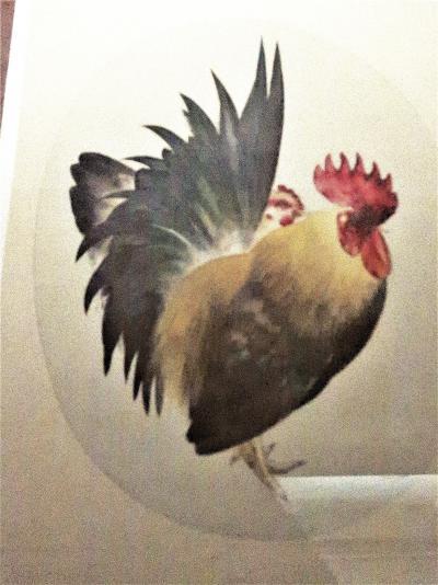 東博3/6 新年を寿ぐ鳥たち 特別1室(酉年特集) ☆「暁の鳥」「祝の鳥」・・美術工芸品