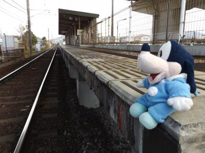 グーちゃん、金毘羅さんへ行く!(金毘羅さん詣で完了!帰宅!編)
