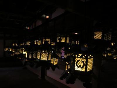 母と行くちょっと日にちをずらした初詣の春日大社~人の少ない特別拝観で釣燈籠を満喫♪