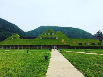 近江八幡の観光スイーツ