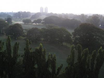 コロンボの自然美(2009年)修正版