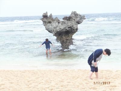 寒い本土を脱出して訪れた暖かい沖縄へ③