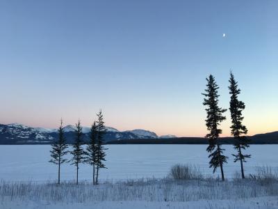 カナダ ホワイトホースでオーロラ鑑賞 パート3