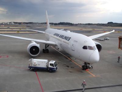 JL809便787機材にて成田から台湾へ
