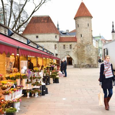 【8】タリンのx'masマーケット(エストニア:タリン)☆バルト三国10日間
