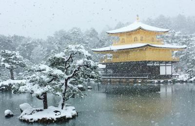 雪の金閣寺から冬の特別公開の二条城!