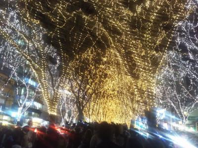 """たまには「ベタ」な観光旅行1612  「東北最大のイルミネーションイベント  """"仙台光のページェント""""」  ~仙台・宮城~"""