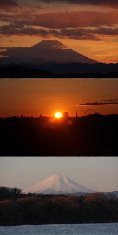 狭山湖の入日・日の出の富士山2017 Mt.Fuji at sunset and sunrise in Lake Sayama