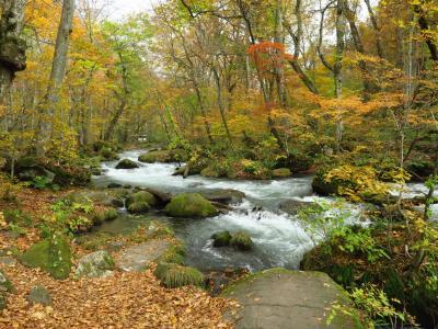 ひとあし早い紅葉を見に東北へ<4> 秋色の「奥入瀬渓流」と「十和田湖」