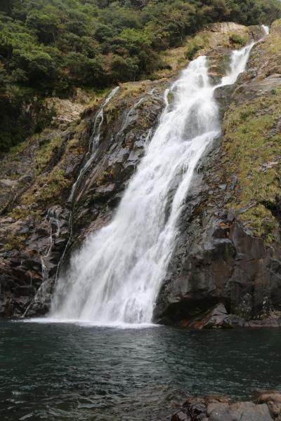 屋久島西部林道を南下・大川(おこ)の滝に出会う