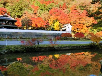 奥津和野の山里にある旧家の庭園を訪ねて  (  燃えるように染まった紅葉がすばらしかった。)   ②