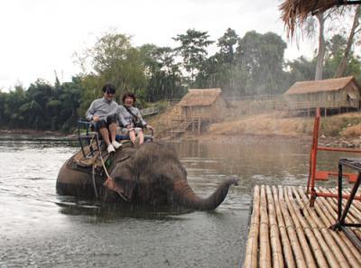 タイ05 カンチャナブリ: めっちゃ可愛いいけどちょっと怖かったゾウ