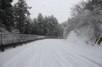 旅するイルカ♪ 低気圧 雪が降ったら ... 生石高原編