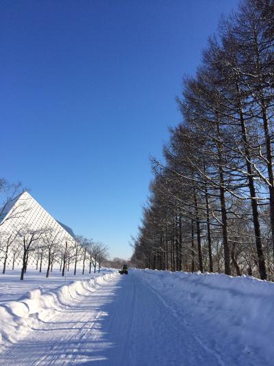 冬のモエレ沼公園 2017
