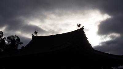 青春18きっぷで行く日帰り滋賀・京都(京都編) 世界遺産・平等院と、伏見で日本酒!