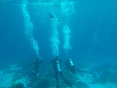 奇麗な海で、リラックス③(ティラン島シュノーケルツアー)