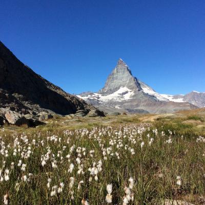 いつかある日ではおそい!スイスへGO! vol.16  陽ざしが眩しいゴルナーグラード!!青空と氷河とマッターホルンがめっちゃ綺麗です!!