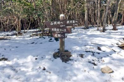 飯能・武川岳から二子山へ