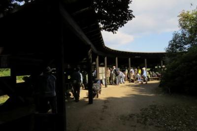 東京港野鳥公園でバードウォッチング [2015](1)