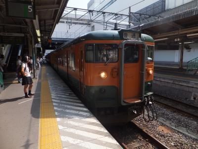 2016 夏の新潟遠征 18きっぷの旅【その1】新橋から水上まで