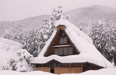 白川郷のライトアップと兼六園・五箇山をめぐるツアーに参加してみました (3)豪雪とこきりこの五箇山