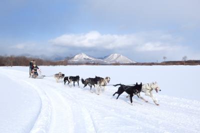 盛りだくさんの観光メニューで真冬の北海道を満喫!