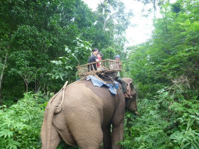 2度目の1歳子連れ海外旅行 タイ③ (カレン族の村でホームステイとジャングル象乗り、ミャンマーへの国境越え編)